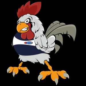 gallo mascotte atletica gallaratese